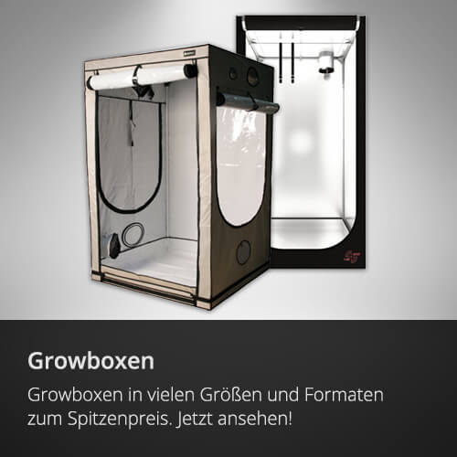 Growboxen